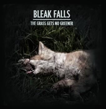 Bleak Falls Cover Artwork