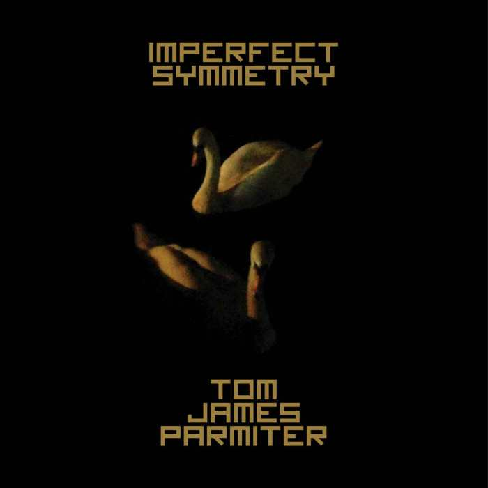 ImperfectSymmetry