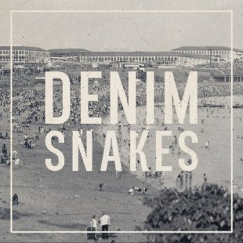 Denim Snakes cover
