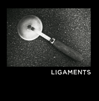 Ligaments cover