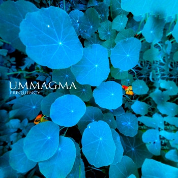 Ummagma - Frequency (cover)_RingMaster Review